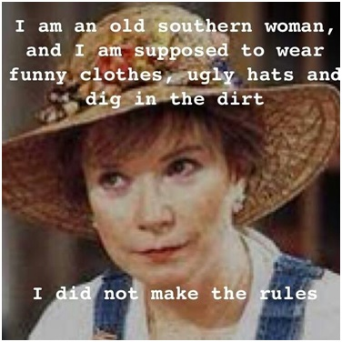 crazy southern lady quote
